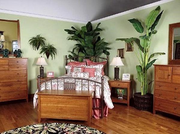 большие растения в спальне