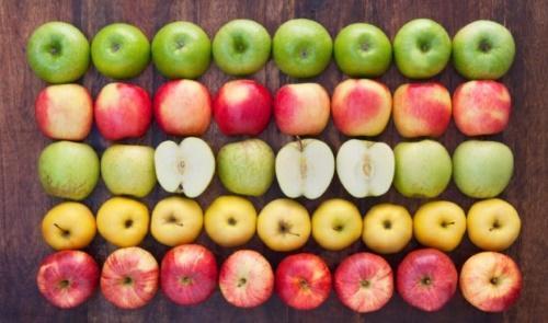 самые полезные яблоки