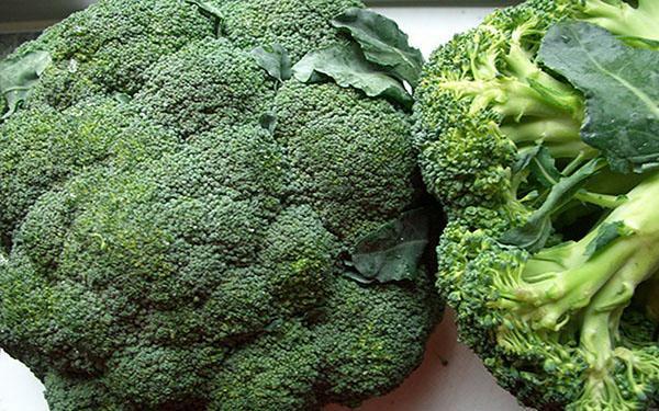 брокколи витаминная
