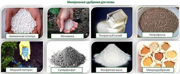 минеральные удобрения