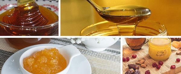 хранение меда из кориандра
